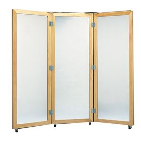 Mirrors & Privacy Screens