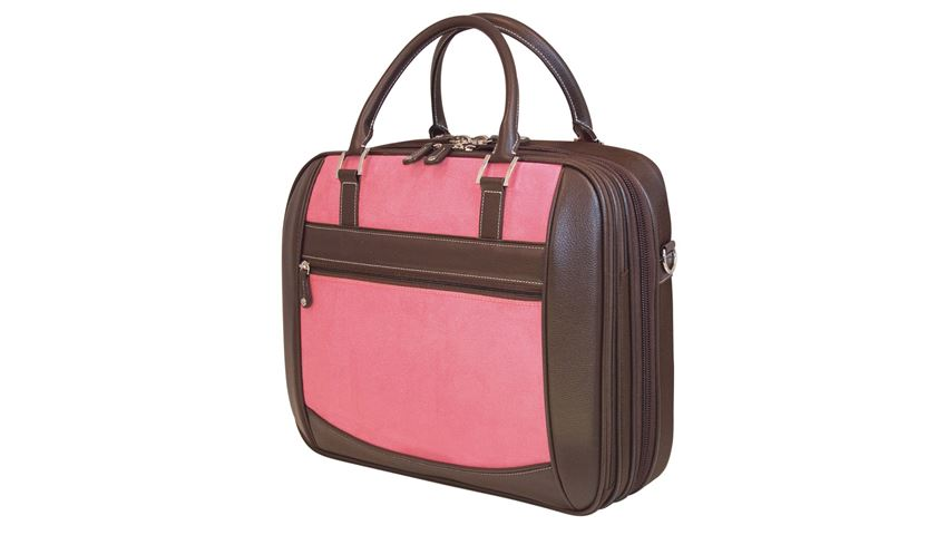 Element Checkpoint-Friendly Briefcase