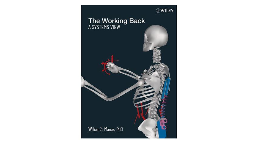The Working Back: A System's View