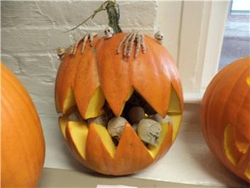 Halloween image 15